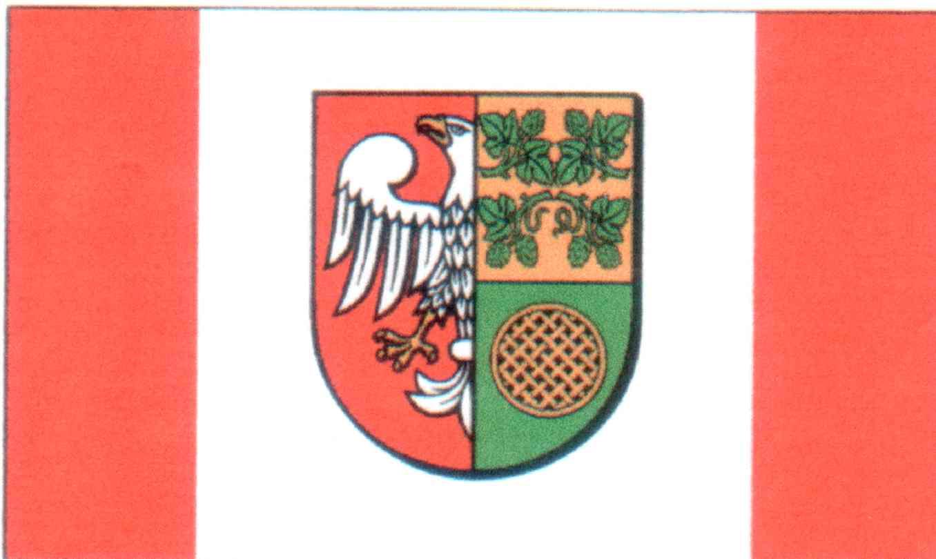 Ilustracja do informacji: Herb i Flaga Powiatu Nowotomyskiego